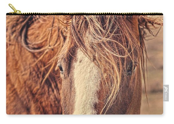 Rustic Eyes Carry-all Pouch