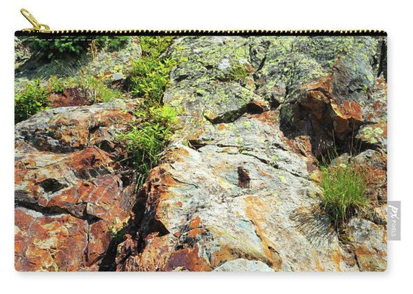 Rusty Rock Face Carry-all Pouch