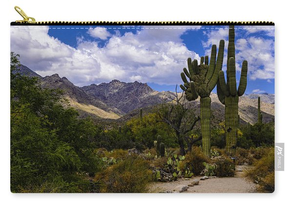 Sabino Canyon No4 Carry-all Pouch