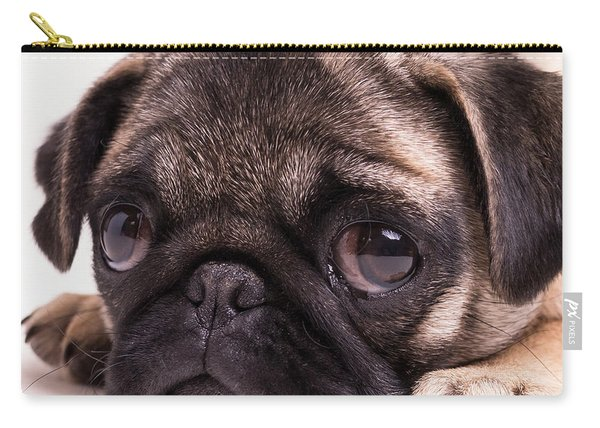 Sad Sack - Pug Puppy Carry-all Pouch