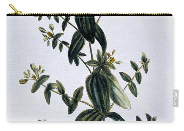 Saint John's Wort Carry-all Pouch