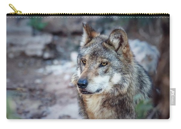 Sancho Searching The Area Carry-all Pouch