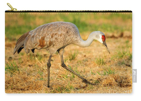 Sandhill Crane Grazing Carry-all Pouch