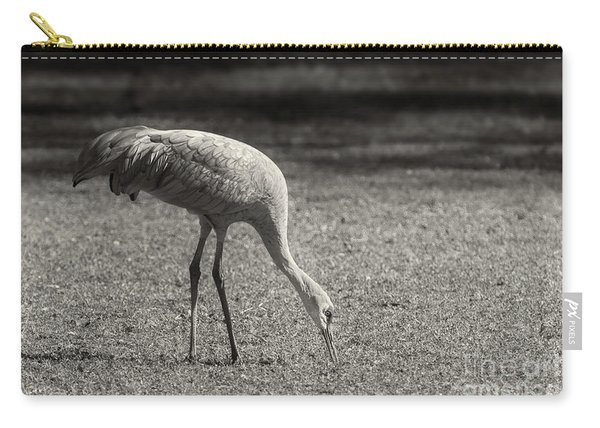 Carry-all Pouch featuring the photograph Sandhill by Susan Warren