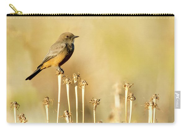 Say's Phoebe Carry-all Pouch