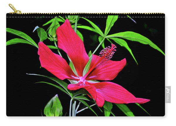 Scarlet Rose Mallow - Hibiscus Coccineus 004 Carry-all Pouch