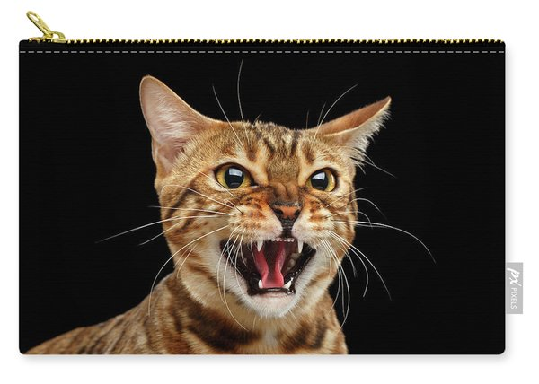 Scary Hissing Bengal Cat On Black Background Carry-all Pouch