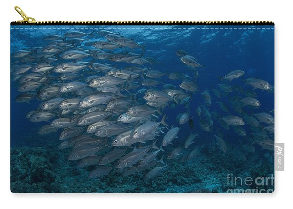 School Of Silver Jacks Or Trevally Carry-all Pouch