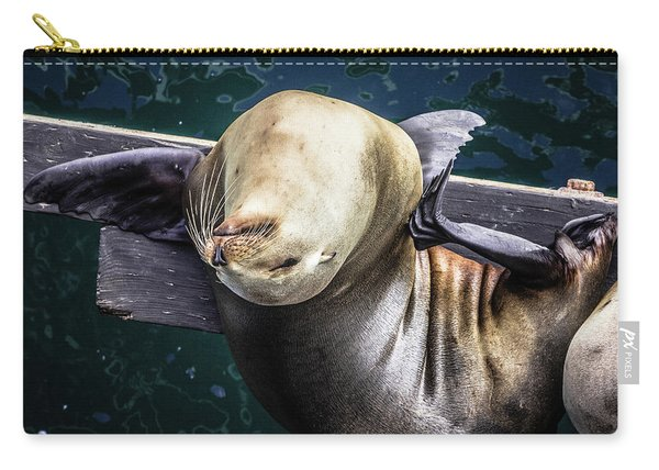California Sea Lion - Scratch The Itch Carry-all Pouch