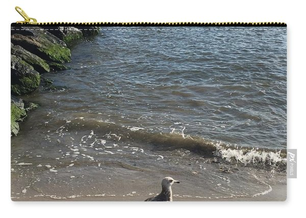 Sea Shadow Carry-all Pouch