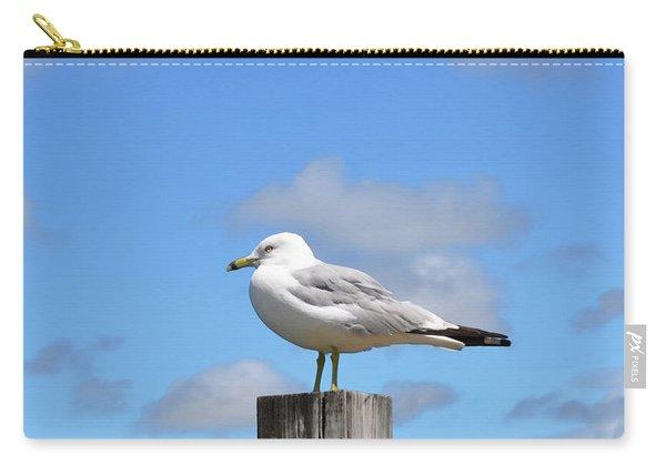 Seagull Beach Art - Sitting Pretty - Sharon Cummings Carry-all Pouch
