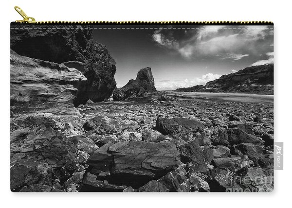 Seal Rock, Oregon Carry-all Pouch