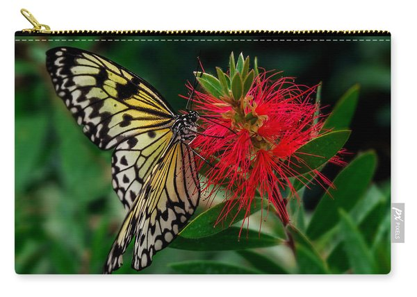 Carry-all Pouch featuring the photograph Searching For Nectar by Nick Bywater