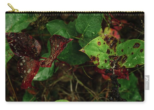 Season Color Carry-all Pouch