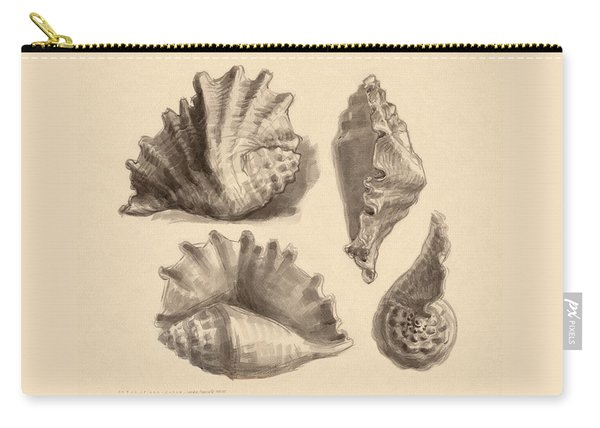 Seba's Spider Conch Carry-all Pouch