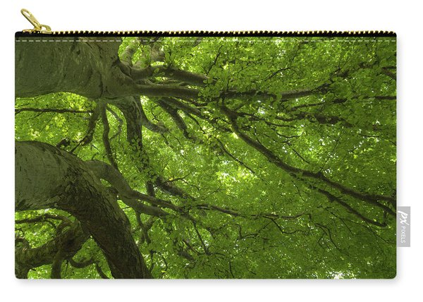 Secular Tree View, Surrounded With Green Light Carry-all Pouch