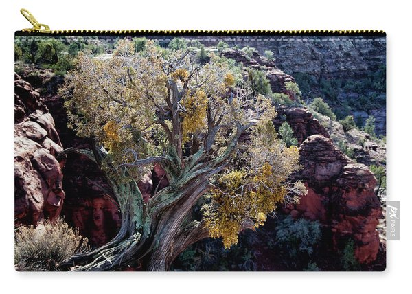 Sedona Tree #2 Carry-all Pouch