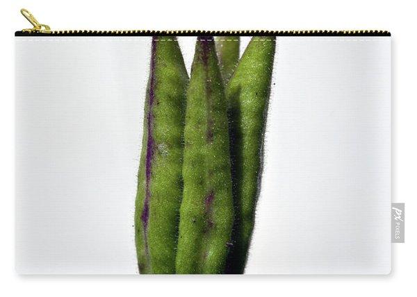 Seedpod Of Aquilegia Vulgaris Carry-all Pouch