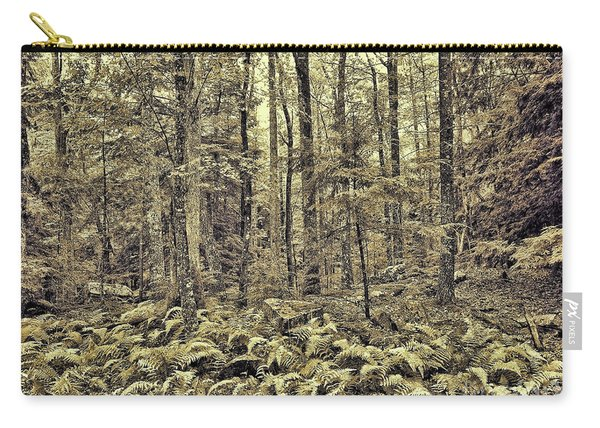 Sepia Landscape Carry-all Pouch