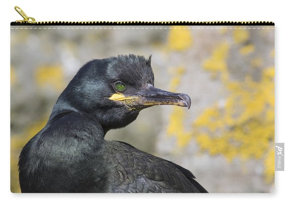 Shag Carry-all Pouch