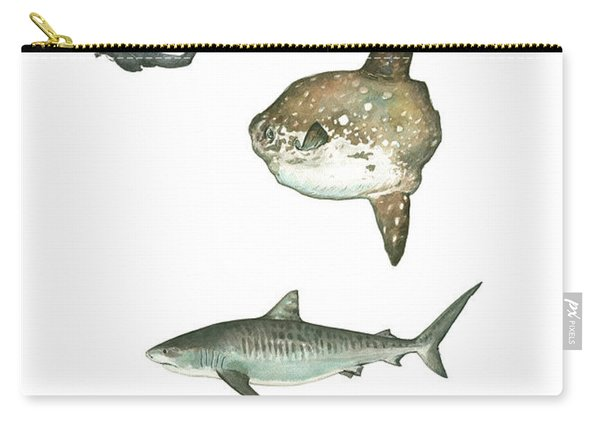 Sharks And Mola Mola Carry-all Pouch