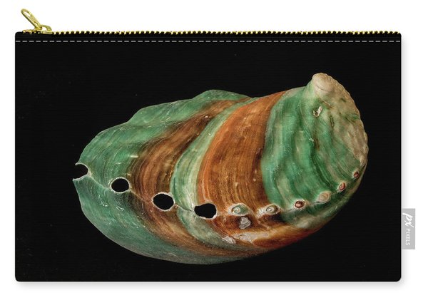 Green And Brown Shell Carry-all Pouch