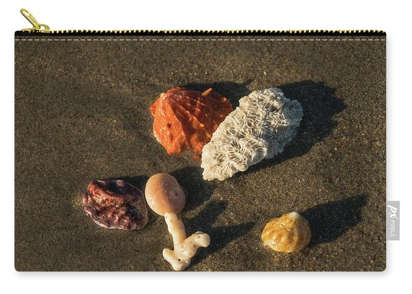 Shell Wave 5 Delray Beach Florida Carry-all Pouch