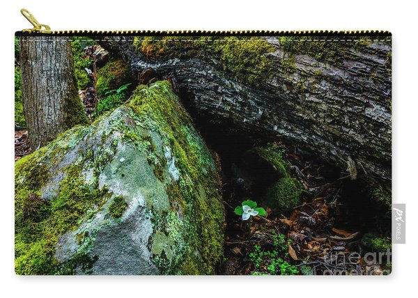 Sheltered By The Rock Carry-all Pouch
