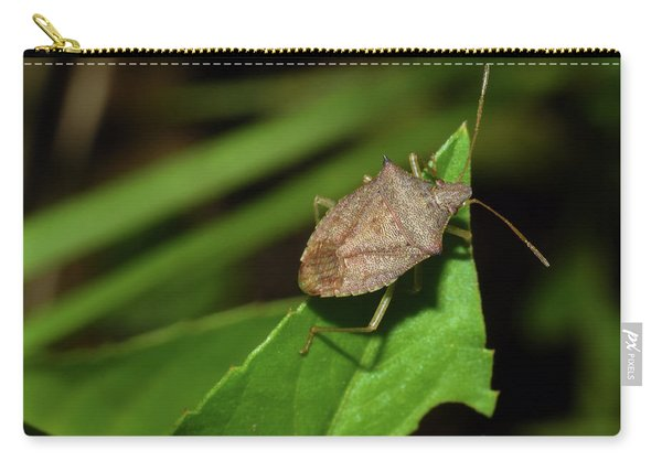 Shield Bug Carry-all Pouch