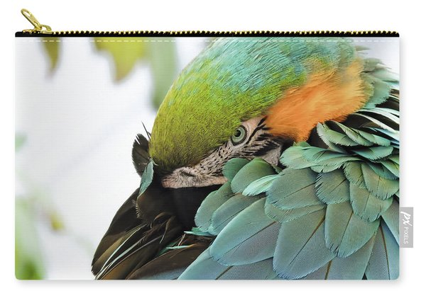 Shy Macaw Carry-all Pouch