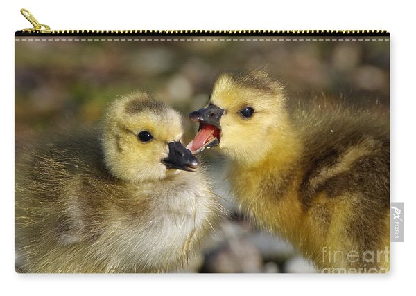 Sibling Love - Baby Canada Geese Carry-all Pouch