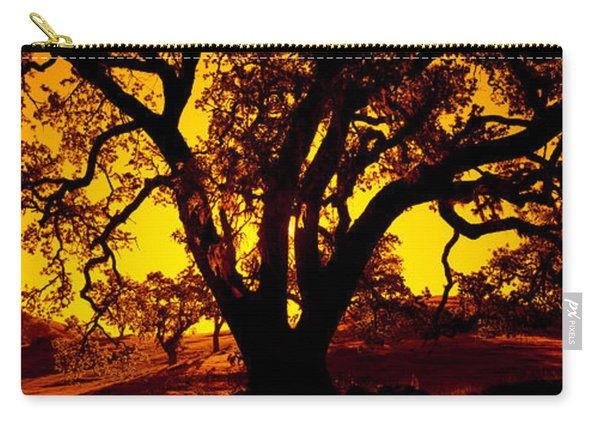 Silhouette Of Coast Live Oak Trees Carry-all Pouch