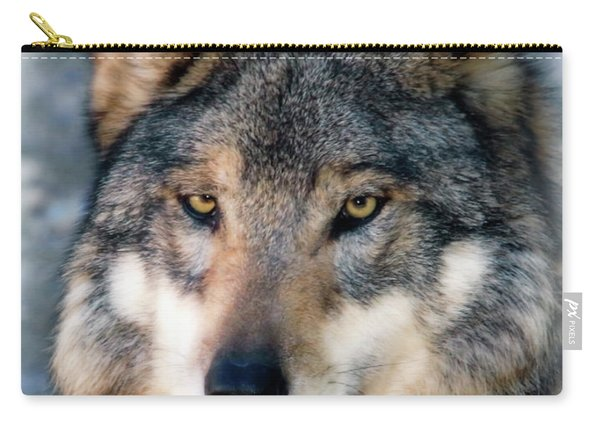 Silly Sancho Carry-all Pouch