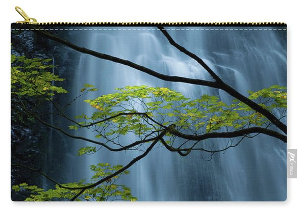 Silver Fall Carry-all Pouch