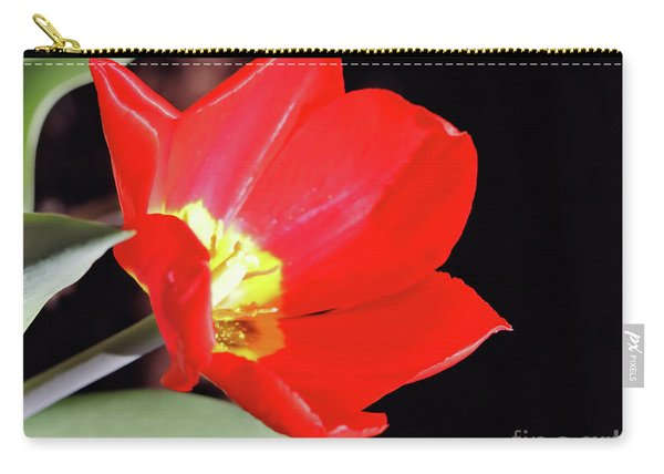 Simply Spring Carry-all Pouch