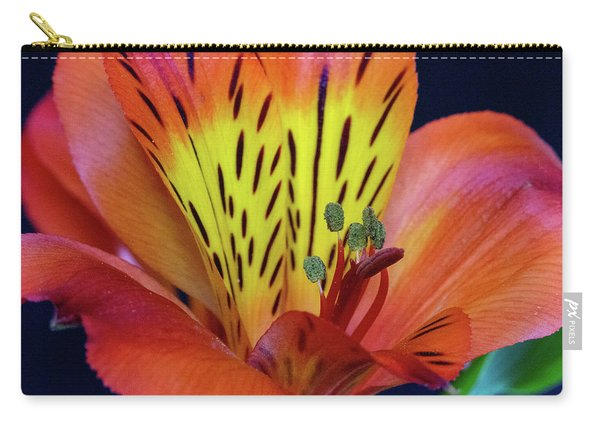 Single Alstroemeria Inca Flower-1 Carry-all Pouch