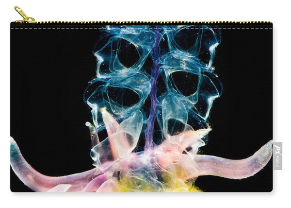 Siphonophore Colony Carry-all Pouch