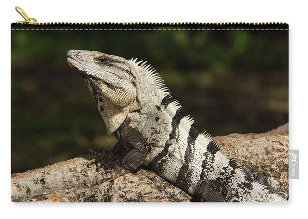 Sir Iguana Mexican Art By Kaylyn Franks Carry-all Pouch