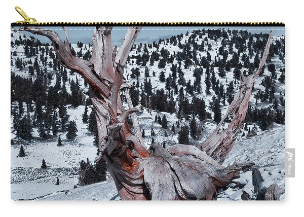 Carry-all Pouch featuring the photograph Skating Pine by Mae Wertz