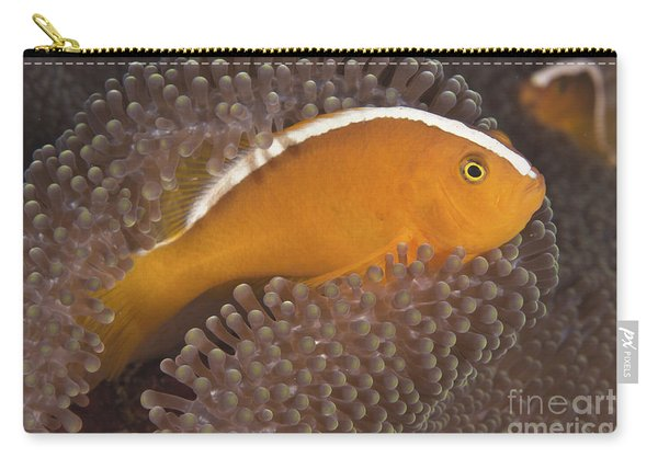 Skunk Clownfish Carry-all Pouch