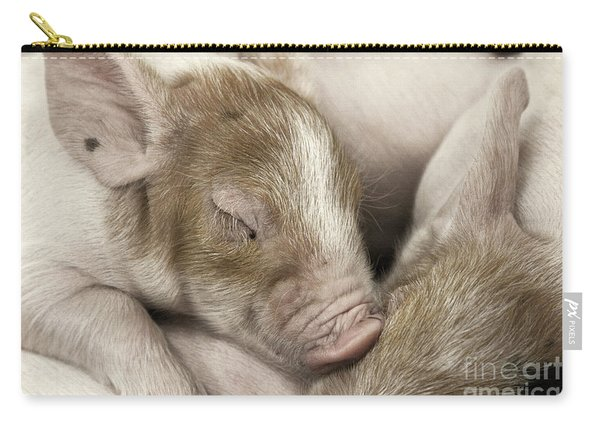 Sleeping Piglet Carry-all Pouch