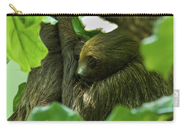 Sloth Sleeping Carry-all Pouch