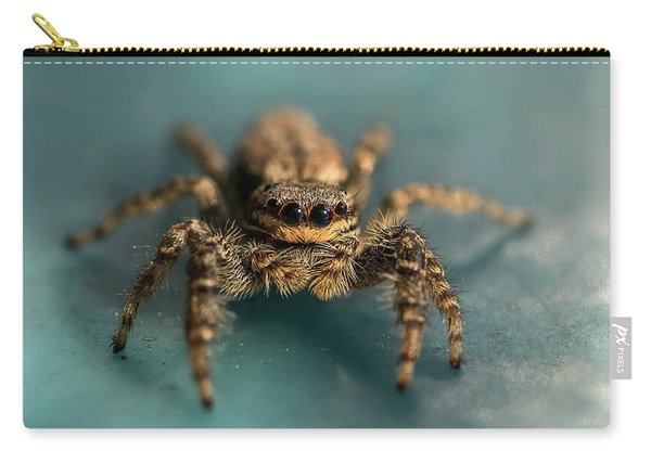 Carry-all Pouch featuring the photograph Small Jumping Spider by Jaroslaw Blaminsky