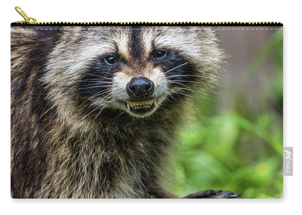 Smiling Raccoon Carry-all Pouch