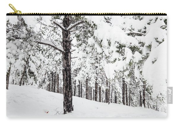 Snowy-4 Carry-all Pouch