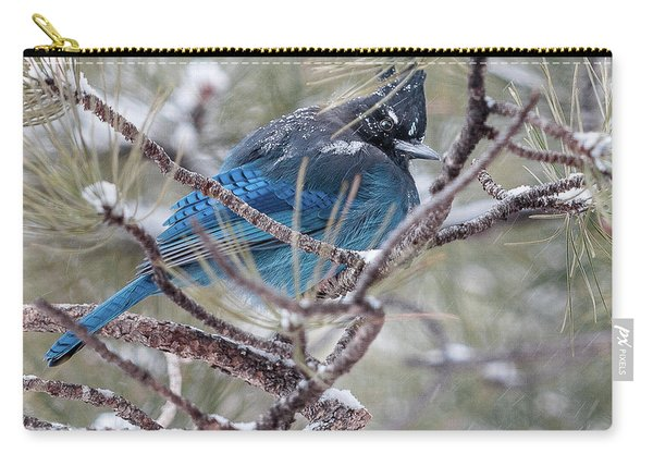 Snowy Bluejay  Carry-all Pouch