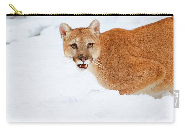 Snowy Cougar Carry-all Pouch
