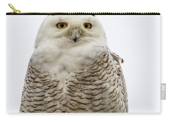 Snowy On A Wire Carry-all Pouch