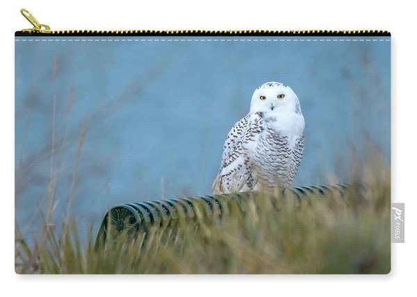 Snowy Owl On A Park Bench Carry-all Pouch
