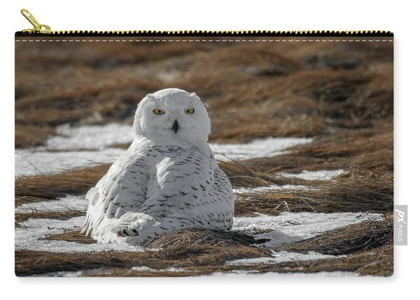 Snowy Owl,marsh Carry-all Pouch